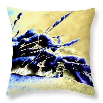 Cold Day Throw Pillow by Carol Lynch