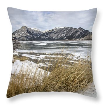 Cold Landscapes Throw Pillow