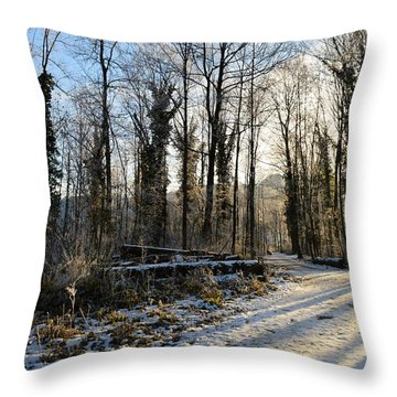 Throw Pillow featuring the photograph Cold Morning by Felicia Tica