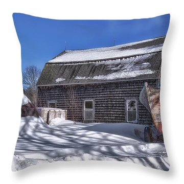 Cold Nipping At You Throw Pillow by Richard Bean