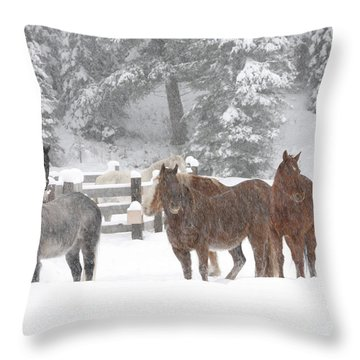 Cold Ponnies Throw Pillow