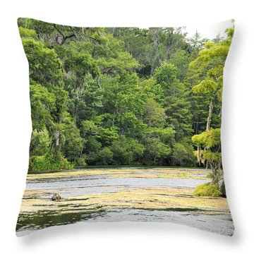 Cold River Runs Throw Pillow by Jan Amiss Photography