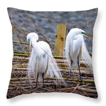 Cold Shoulder Throw Pillow by Susie Hoffpauir