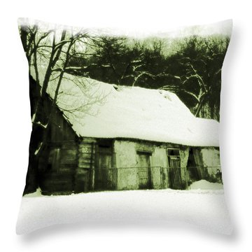 Countryside Winter Scene Throw Pillow