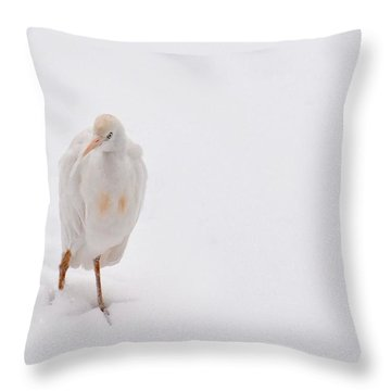 Throw Pillow featuring the photograph Cold Toes 1 by Diane Alexander