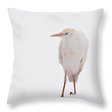 Throw Pillow featuring the photograph Cold Toes 3 by Diane Alexander