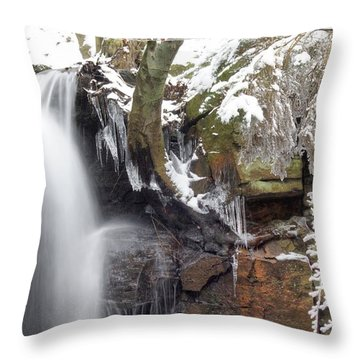 Cold Water Rush 2 Throw Pillow by David Birchall
