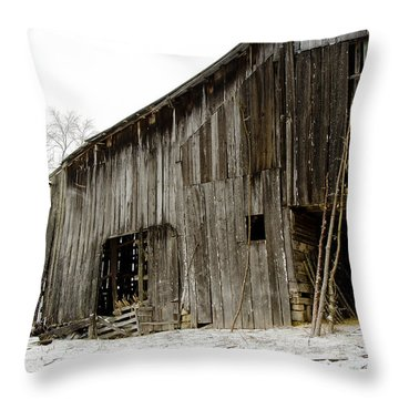 Cold Winter At The Barn  Throw Pillow by Wilma  Birdwell