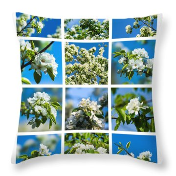 Collage Spring Blossoms 1 Throw Pillow by Alexander Senin