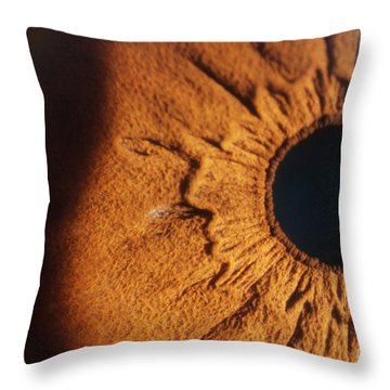 Collarette And Pupil Throw Pillow