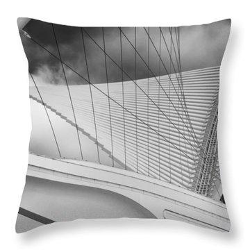 Collector Of Art Throw Pillow by Jack Zulli