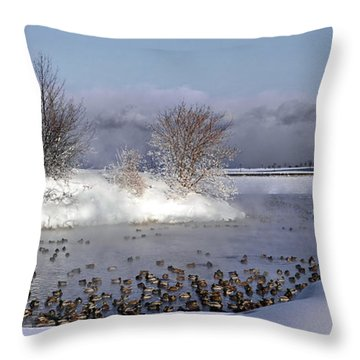 Collingwood Terminal Building In Winter  Throw Pillow