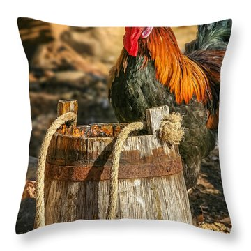 Coloful Rooster 2 Throw Pillow by Mary Almond