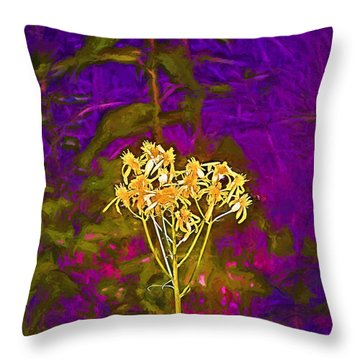 Color 5 Throw Pillow by Pamela Cooper