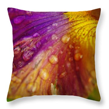 Color And Droplets Throw Pillow by Jeff Swan