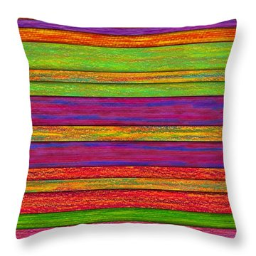 Color And Texture Throw Pillow by David K Small