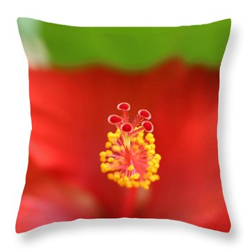 Color Blast Throw Pillow by Ramabhadran Thirupattur