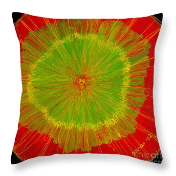 Color Burst 2 Throw Pillow