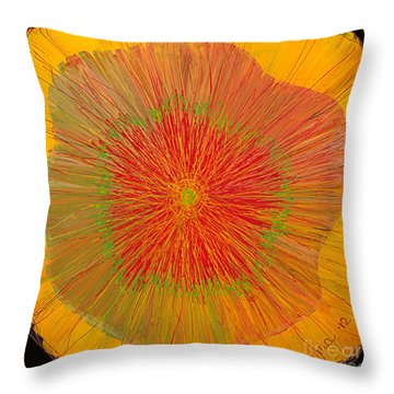 Color Burst 4 Throw Pillow
