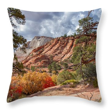 Throw Pillow featuring the photograph Color Competition At Zion National Park by John M Bailey