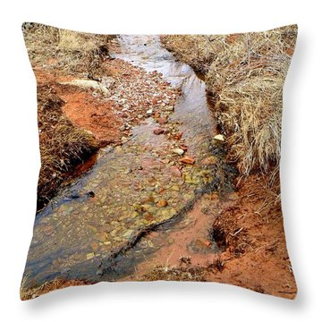 Color Country Creek Kanarraville Utah Throw Pillow by Deborah Moen