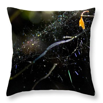 Throw Pillow featuring the photograph Color Dots Spider Net by Yulia Kazansky
