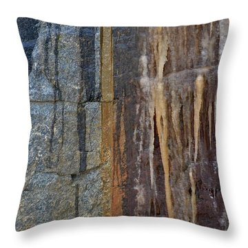 Throw Pillow featuring the photograph Color Flow  by Lyle Crump