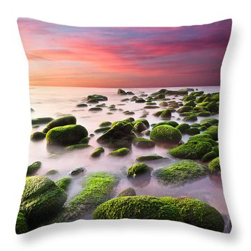 Color Harmony Throw Pillow by Jorge Maia