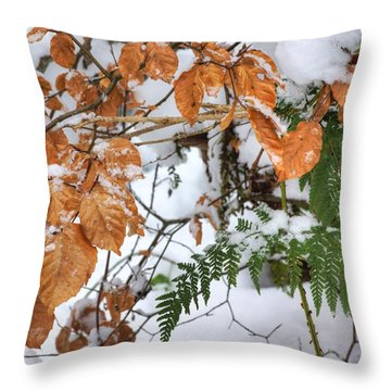 Color In The Snow Throw Pillow by David Birchall