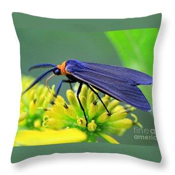 Color Me Blue Throw Pillow