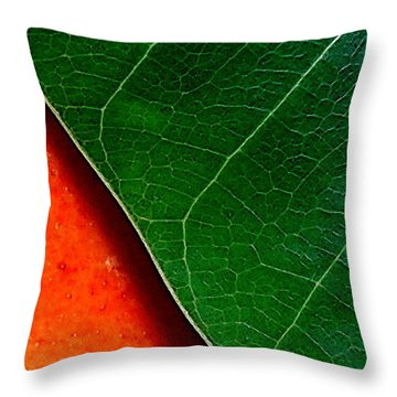 Color Me Mango Sweet And Spicy Throw Pillow by James Temple