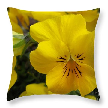 Throw Pillow featuring the photograph Color Me Yellow by Arlene Carmel
