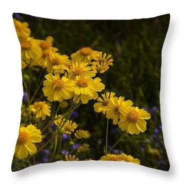 Color Me Yellow  Throw Pillow by Saija  Lehtonen