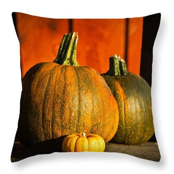 Throw Pillow featuring the photograph Color Of Fall by Aaron Berg