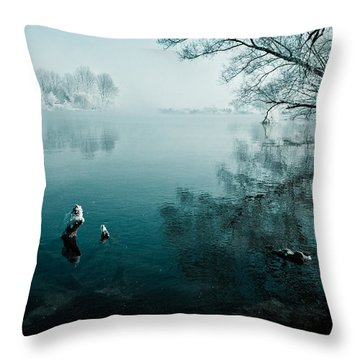 Color Of Ice Throw Pillow