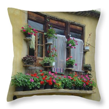 Color Of Life Throw Pillow by Floria Varnoos