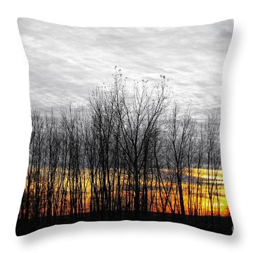 Color Of The Sun Throw Pillow