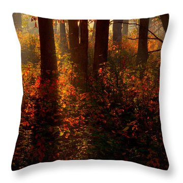 Color On The Forest Floor Throw Pillow