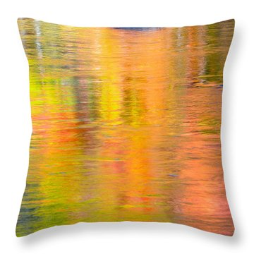 Color Reflections-1 Throw Pillow by Michael Hubley