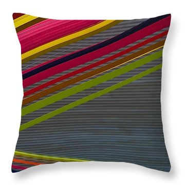Throw Pillow featuring the photograph Color Strips by Stuart Litoff