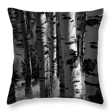 Colorado Aspen Grove II  Throw Pillow by John Pagliuca