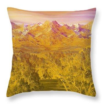 Colorado Dreaming Throw Pillow