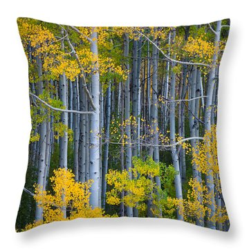 Colorado Fall Color Throw Pillow by Inge Johnsson
