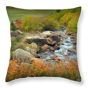 Colorado Fall Stream 2 Throw Pillow