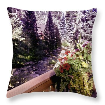 Colorado Landscape Throw Pillow by Madeline Ellis