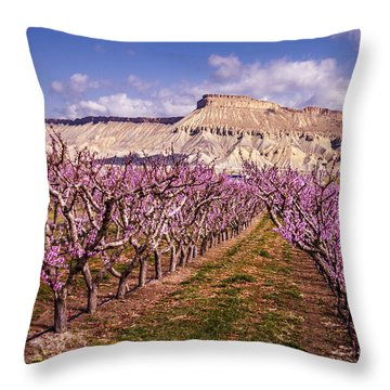 Colorado Orchards In Bloom Throw Pillow