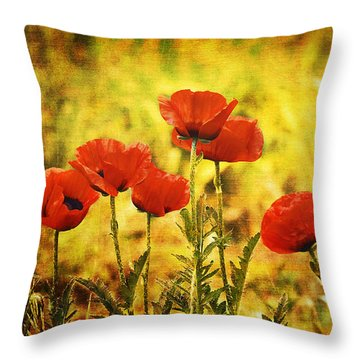 Throw Pillow featuring the photograph Colorado Poppies by Tammy Wetzel