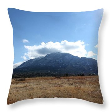 Throw Pillow featuring the photograph Colorado Walk by Erica Hanel