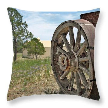 Colorado - Where The Columbines Grow Throw Pillow by Christine Till
