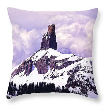 Colorados Lizard Head Throw Pillow